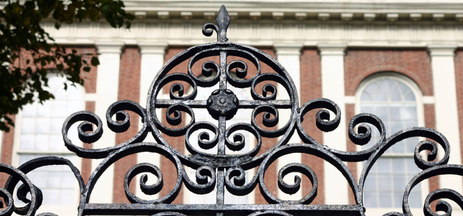 Custom iron gates in Sarasota Florida